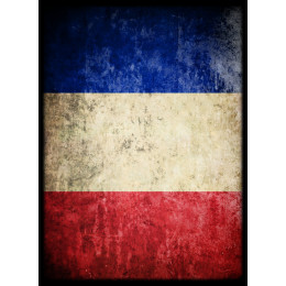 Deck Protector Sleeves - 50ct - Flag of France