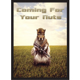 COMING FOR YOUR NUTS! - Combat Squirrel  -50ct DOUBLE MATTE Art Deck Protector Sleeves