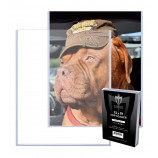 13x19 Lithograph Photo Topload Toploaders Holders - 10ct Pack